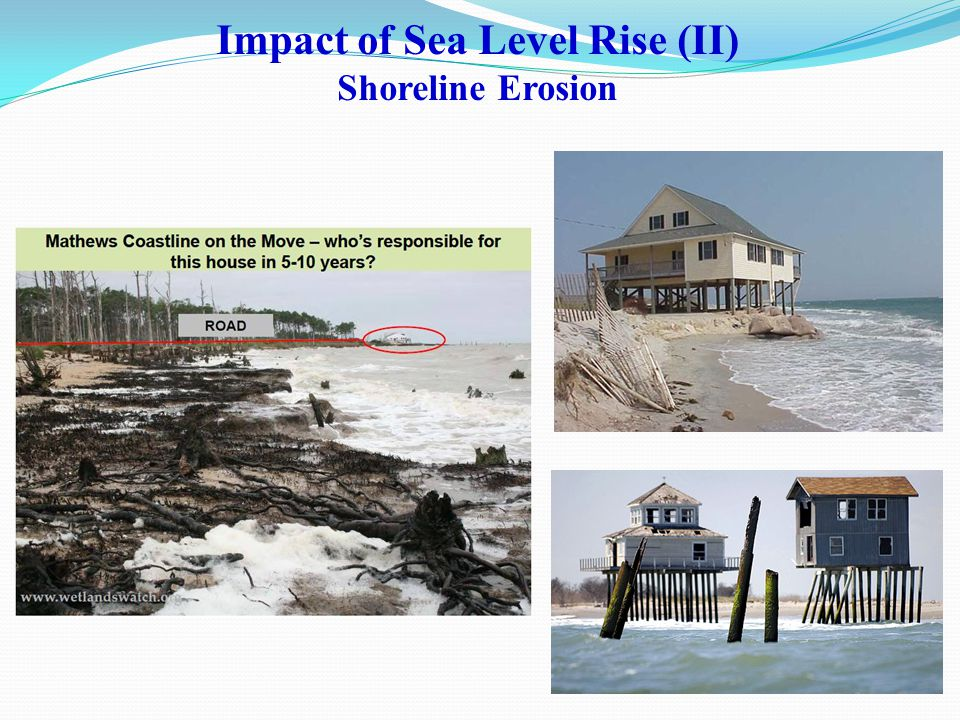 Impact of Sea Level Rise (II) Shoreline Erosion