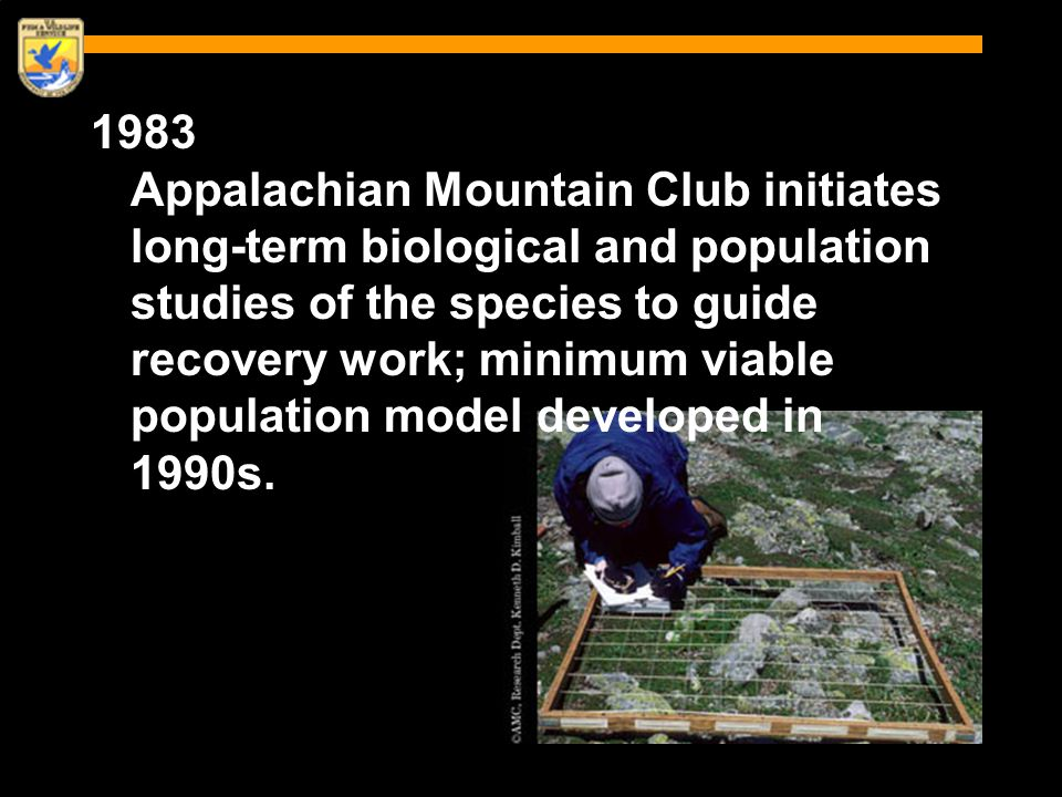 1983 Appalachian Mountain Club initiates long-term biological and population studies of the species to guide recovery work; minimum viable population model developed in 1990s.