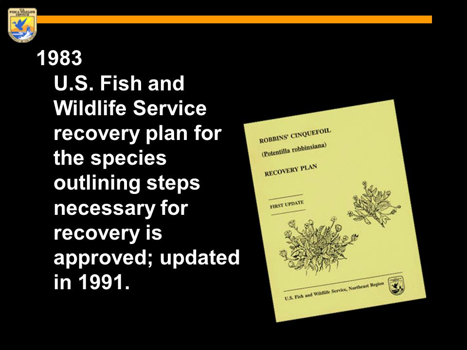 1983 U.S. Fish and Wildlife Service recovery plan for the species outlining steps necessary for recovery is approved; updated in 1991.