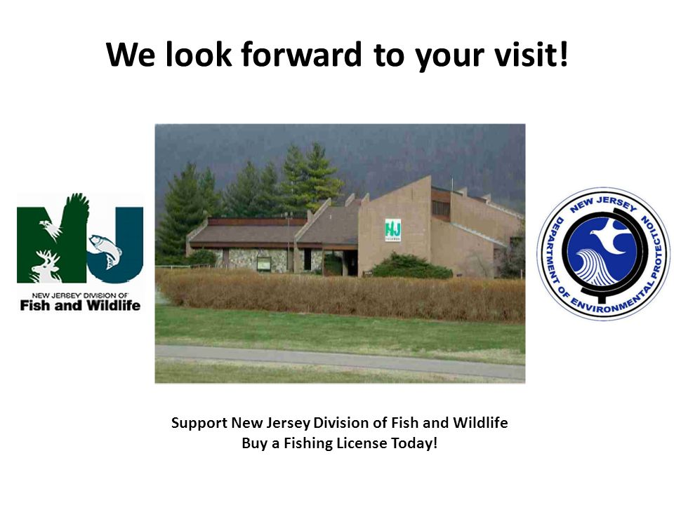 We look forward to your visit! Support New Jersey Division of Fish and Wildlife Buy a Fishing License Today!