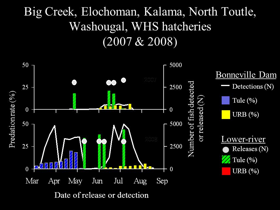 Big Creek, Elochoman, Kalama, North Toutle, Washougal, WHS hatcheries (2007 & 2008) Predation rate (%) Number of fish detected or released (N) Date of