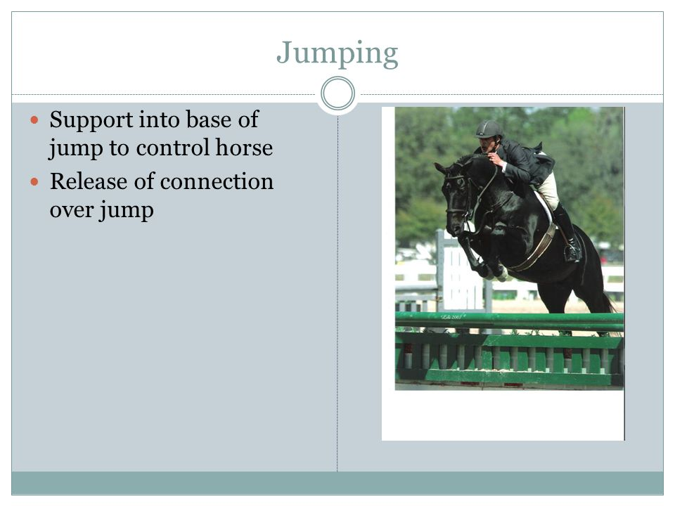 Jumping Support into base of jump to control horse Release of connection over jump