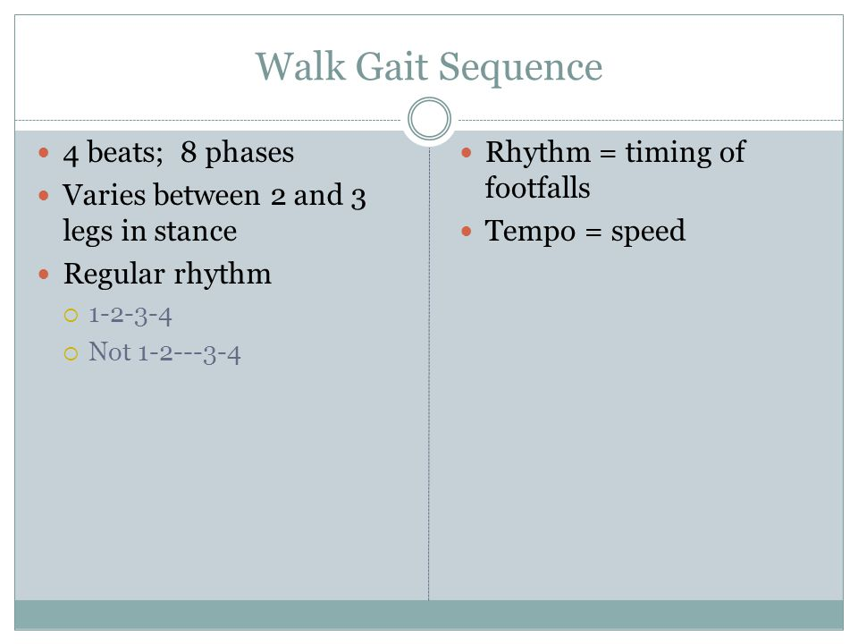 Walk Gait Sequence 4 beats; 8 phases Varies between 2 and 3 legs in stance Regular rhythm  1-2-3-4  Not 1-2---3-4 Rhythm = timing of footfalls Tempo = speed