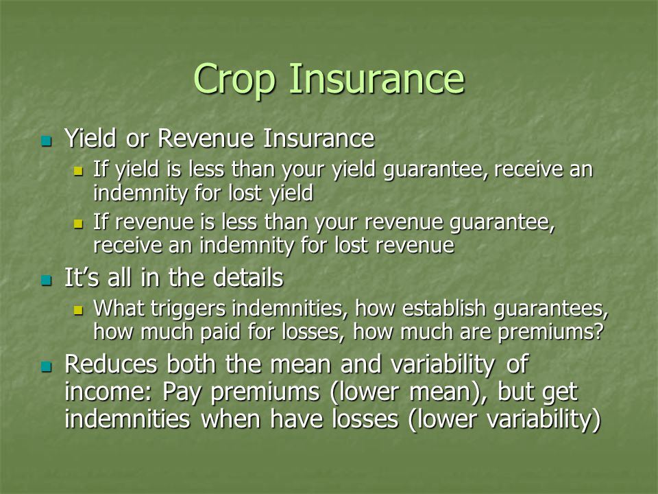 Crop Insurance Yield or Revenue Insurance Yield or Revenue Insurance If yield is less than your yield guarantee, receive an indemnity for lost yield If yield is less than your yield guarantee, receive an indemnity for lost yield If revenue is less than your revenue guarantee, receive an indemnity for lost revenue If revenue is less than your revenue guarantee, receive an indemnity for lost revenue It's all in the details It's all in the details What triggers indemnities, how establish guarantees, how much paid for losses, how much are premiums.