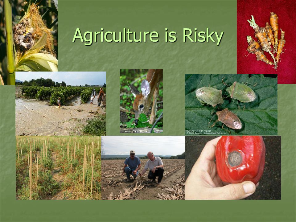 Agriculture is Risky
