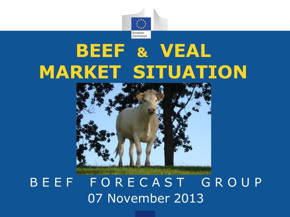 BEEF & VEAL MARKET SITUATION B E E F F O R E C A S T G R O U P 07 November 2013