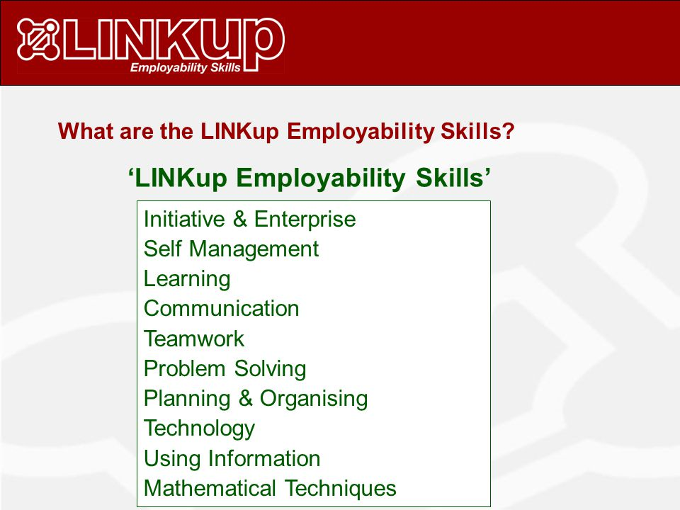What are the LINKup Employability Skills.