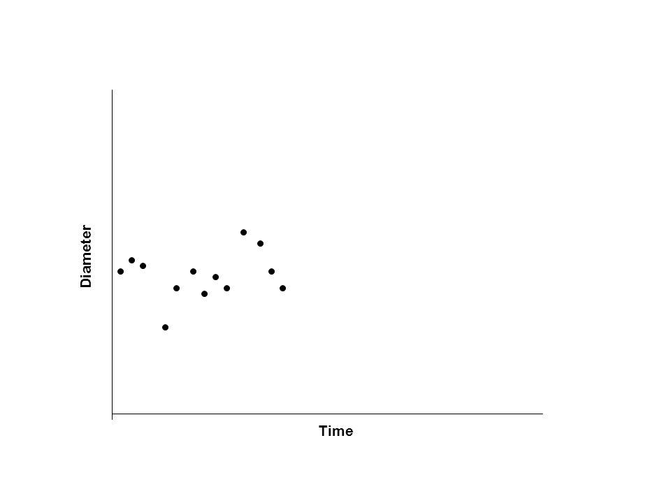 Time Diameter