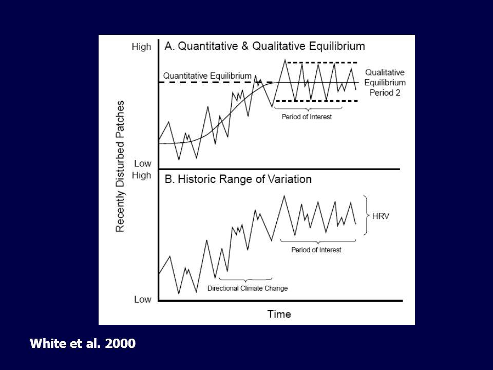 White et al. 2000