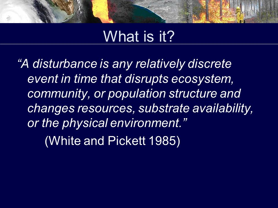 What is it.Is there an acceptable and universal definition of what constitutes a disturbance.