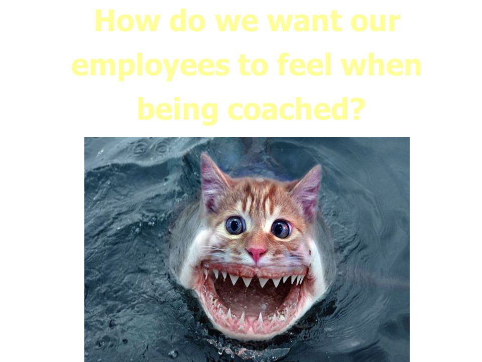 How do we want our employees to feel when being coached?