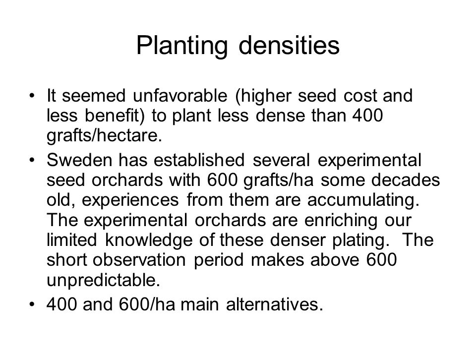 Planting densities It seemed unfavorable (higher seed cost and less benefit) to plant less dense than 400 grafts/hectare.
