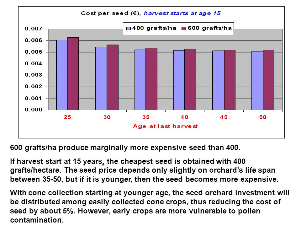 600 grafts/ha produce marginally more expensive seed than 400. If harvest start at 15 years, the cheapest seed is obtained with 400 grafts/hectare. Th