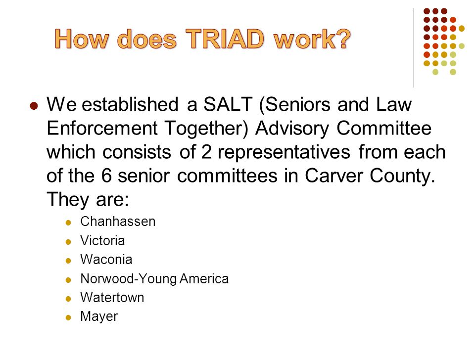 We established a SALT (Seniors and Law Enforcement Together) Advisory Committee which consists of 2 representatives from each of the 6 senior committees in Carver County.