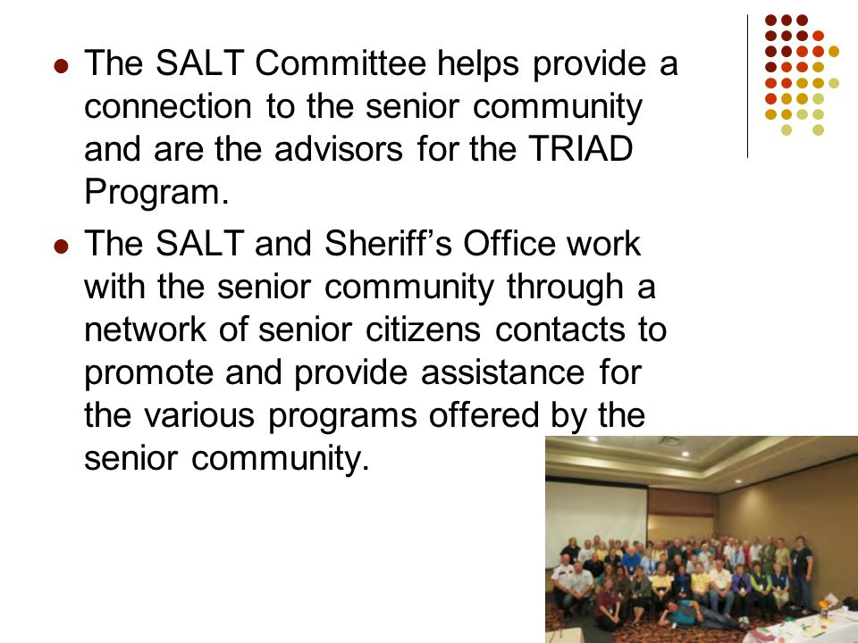 The SALT Committee helps provide a connection to the senior community and are the advisors for the TRIAD Program.