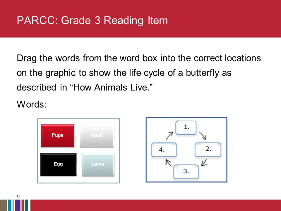 Drag the words from the word box into the correct locations on the graphic to show the life cycle of a butterfly as described in How Animals Live. Words: PARCC: Grade 3 Reading Item 9 Pupa Adult Egg Larva