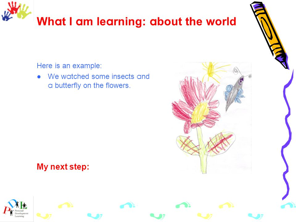 Wh a t I a m le a rning: a bout the world Here is an example: ●We w a tched some insects a nd a butterfly on the flowers.