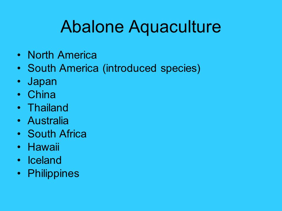 Abalone Aquaculture North America South America (introduced species) Japan China Thailand Australia South Africa Hawaii Iceland Philippines
