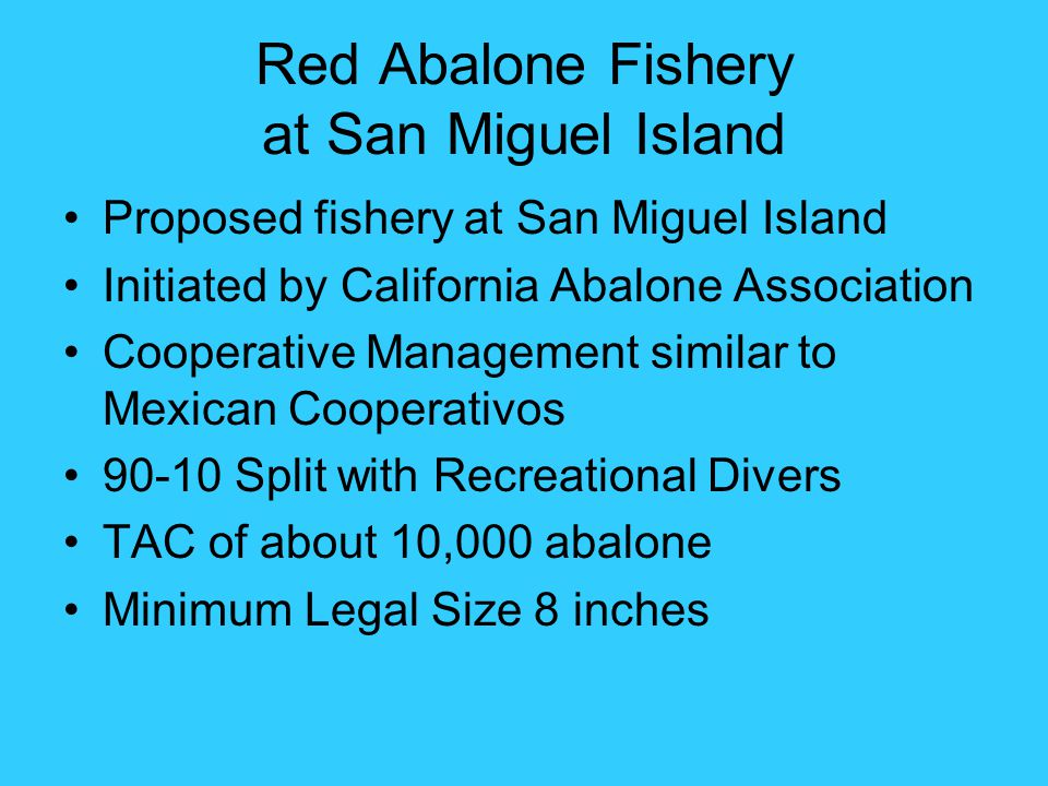 Red Abalone Fishery at San Miguel Island Proposed fishery at San Miguel Island Initiated by California Abalone Association Cooperative Management simi