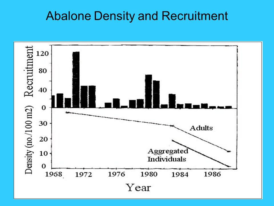 Abalone Density and Recruitment