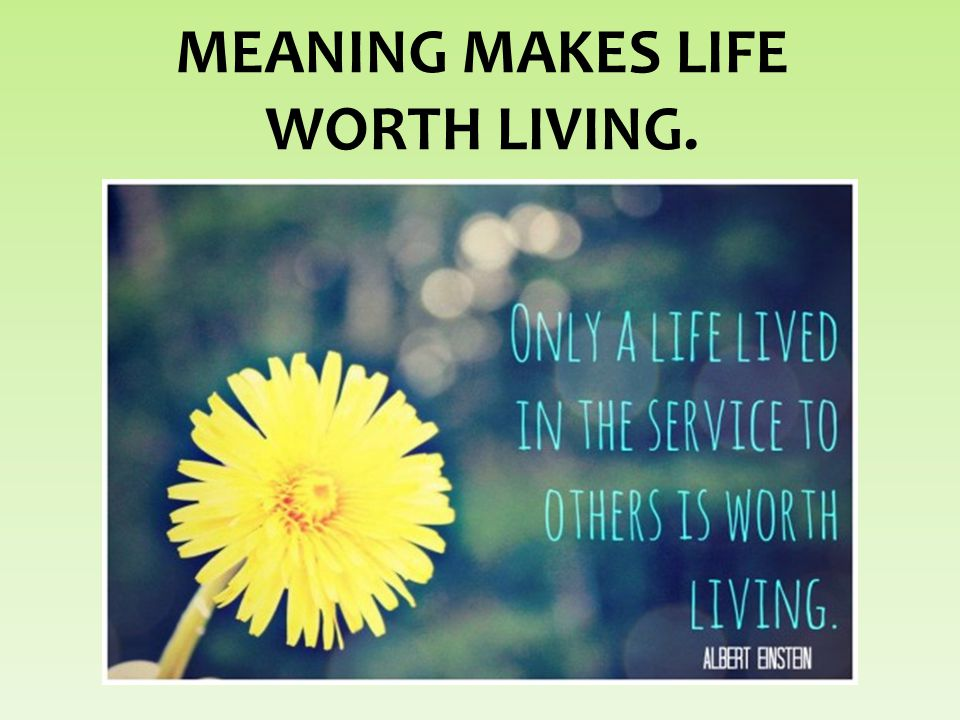 MEANING MAKES LIFE WORTH LIVING.
