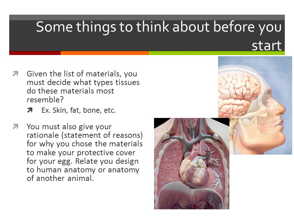 Some things to think about before you start  Given the list of materials, you must decide what types tissues do these materials most resemble.