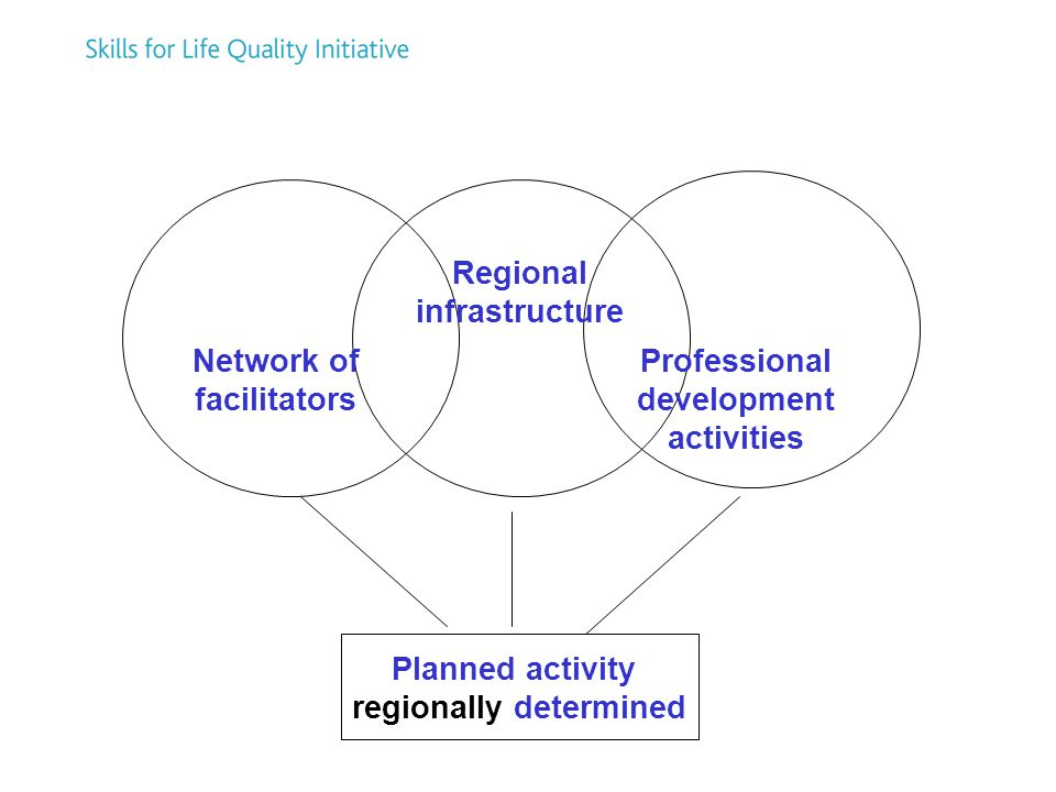 Network of facilitators Regional infrastructure Professional development activities Planned activity regionally determined