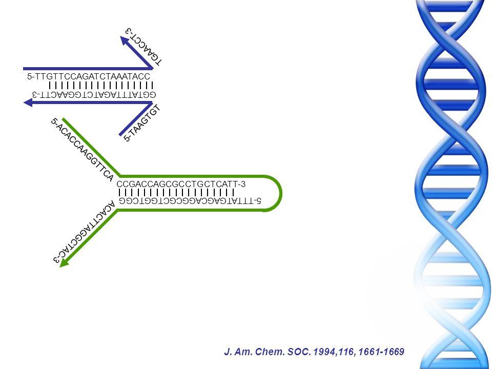 5-ACACCAAGGTTCA CCGACCAGCGCCTGCTCATT-3 5-TTTATGAGCAGGCGCTGGTCGG ACACTTAGGCTAC-3 5-TTGTTCCAGATCTAAATACC GGTATTTAGATCTGGAACTT-3 5-TAAGTGT TGAACCT-3 J.
