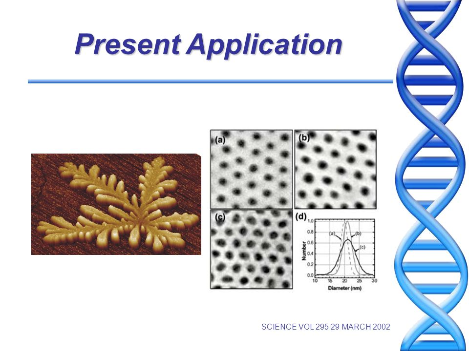 Future Applications Crystallization at All Scales Robotics and Manufacturing Nanoscience and Technology Microelectronics We understand very little about how dissipation of energy leads to the emergence of ordered structures from disordered components in these systems.