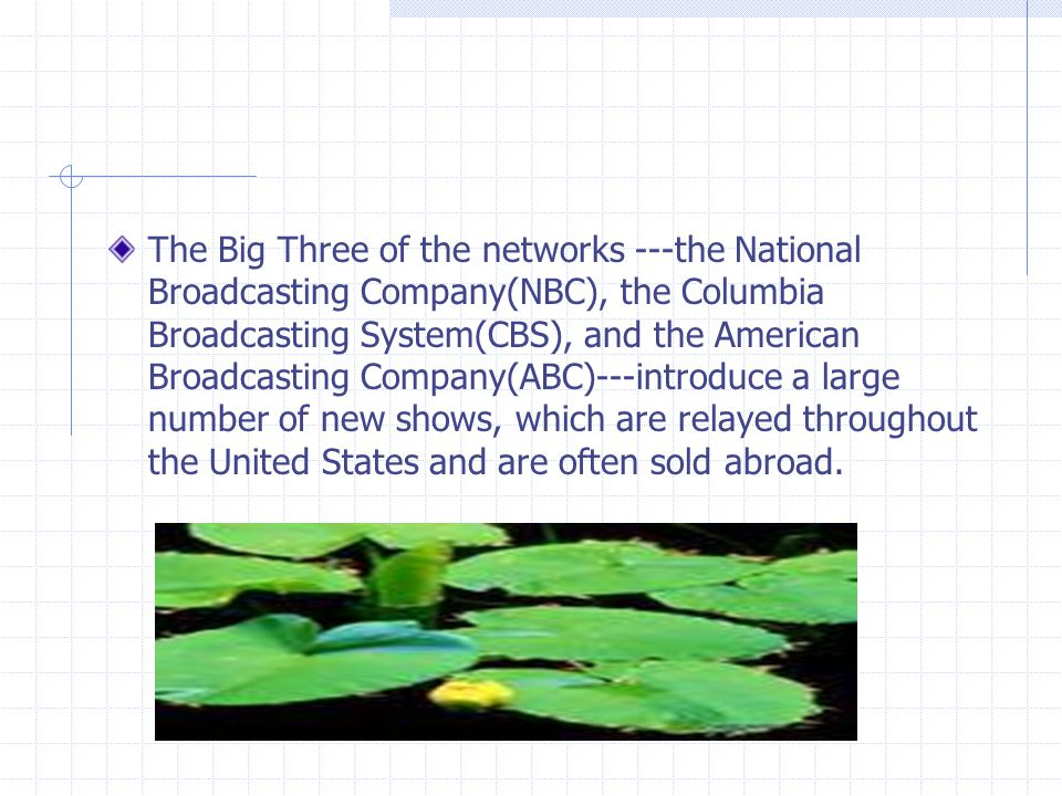 The Big Three of the networks ---the National Broadcasting Company(NBC), the Columbia Broadcasting System(CBS), and the American Broadcasting Company(