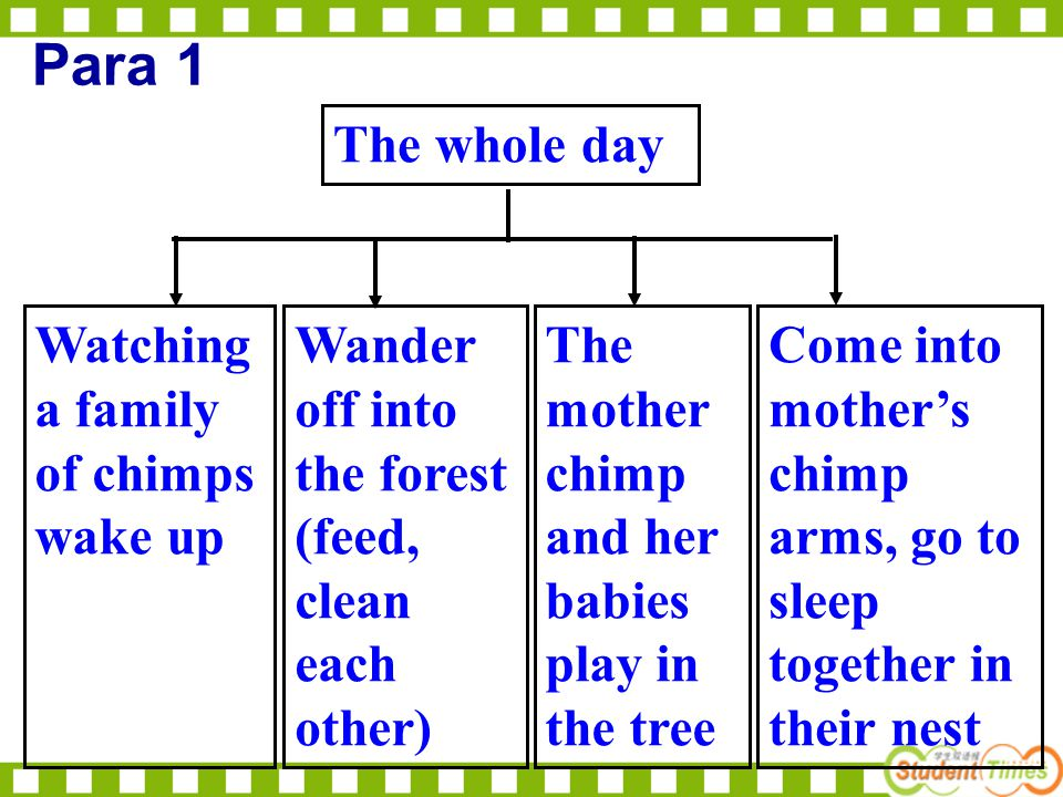 Watching a family of chimps wake up Wander off into the forest (feed, clean each other) The mother chimp and her babies play in the tree Come into mot