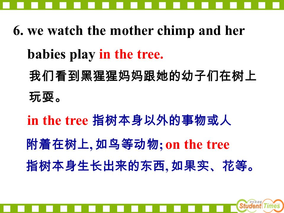 6. we watch the mother chimp and her babies play in the tree.