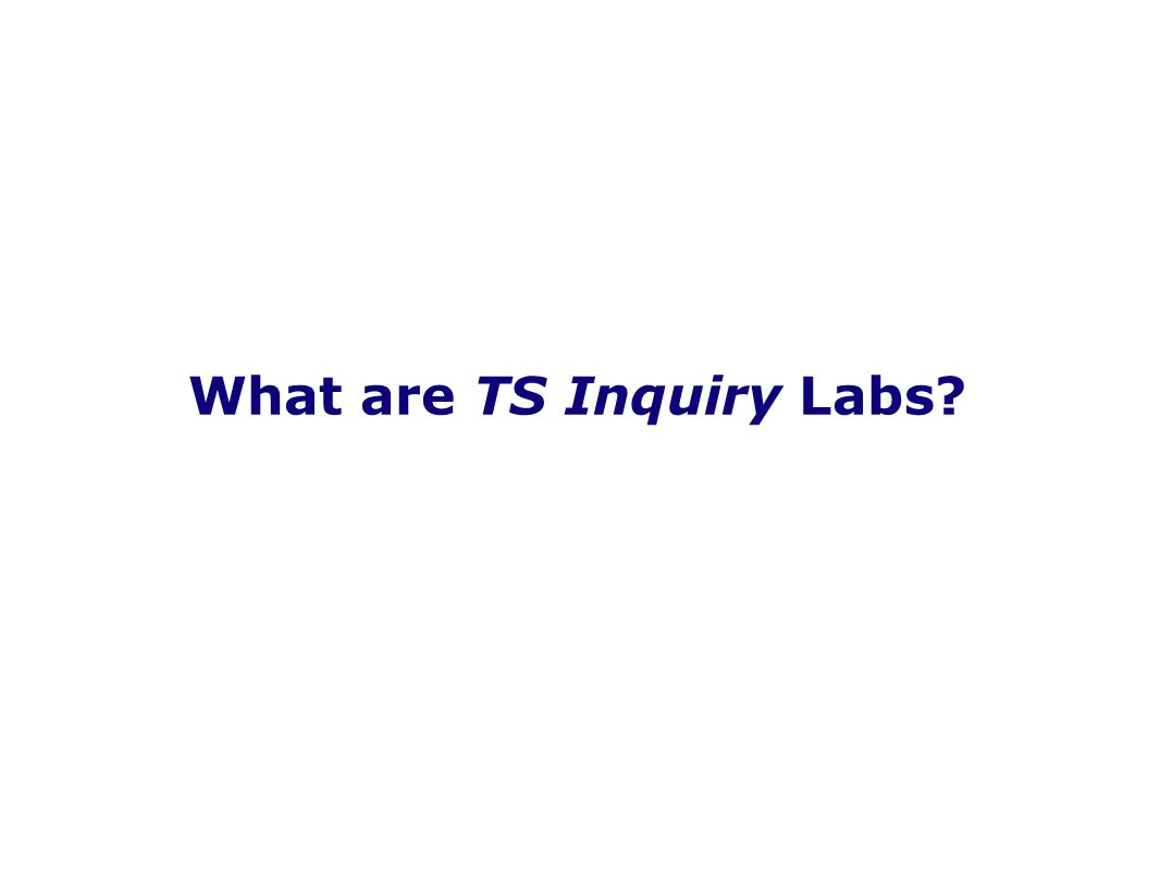 What are TS Inquiry Labs?