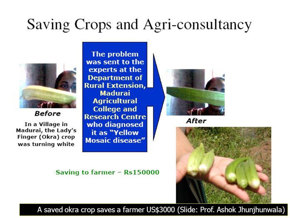 A saved okra crop saves a farmer US$3000 (Slide: Prof. Ashok Jhunjhunwala)