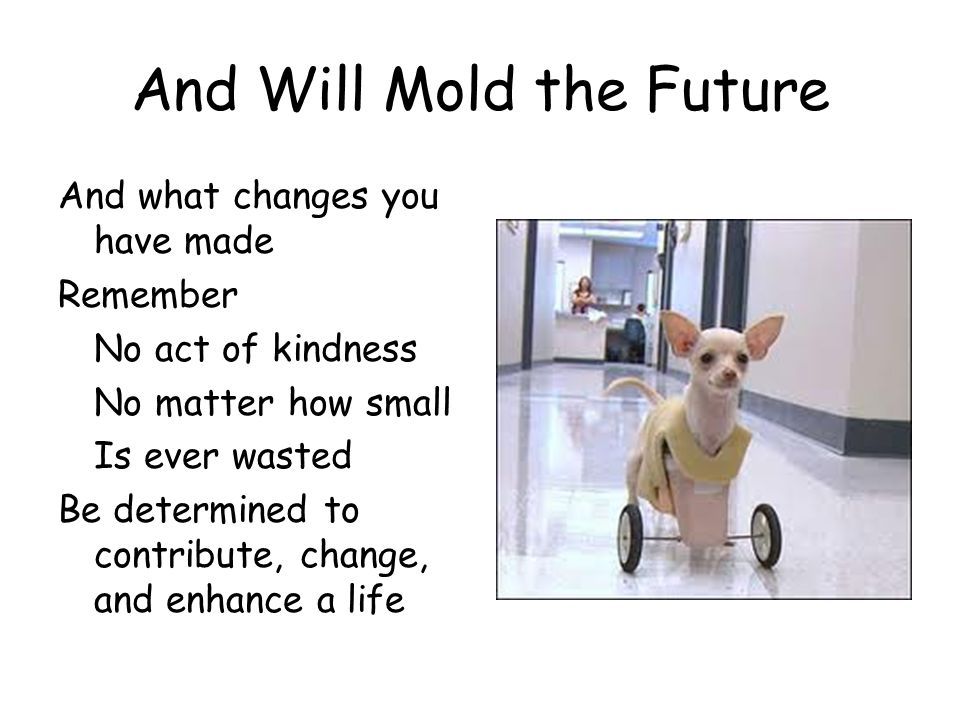 And Will Mold the Future And what changes you have made Remember No act of kindness No matter how small Is ever wasted Be determined to contribute, ch