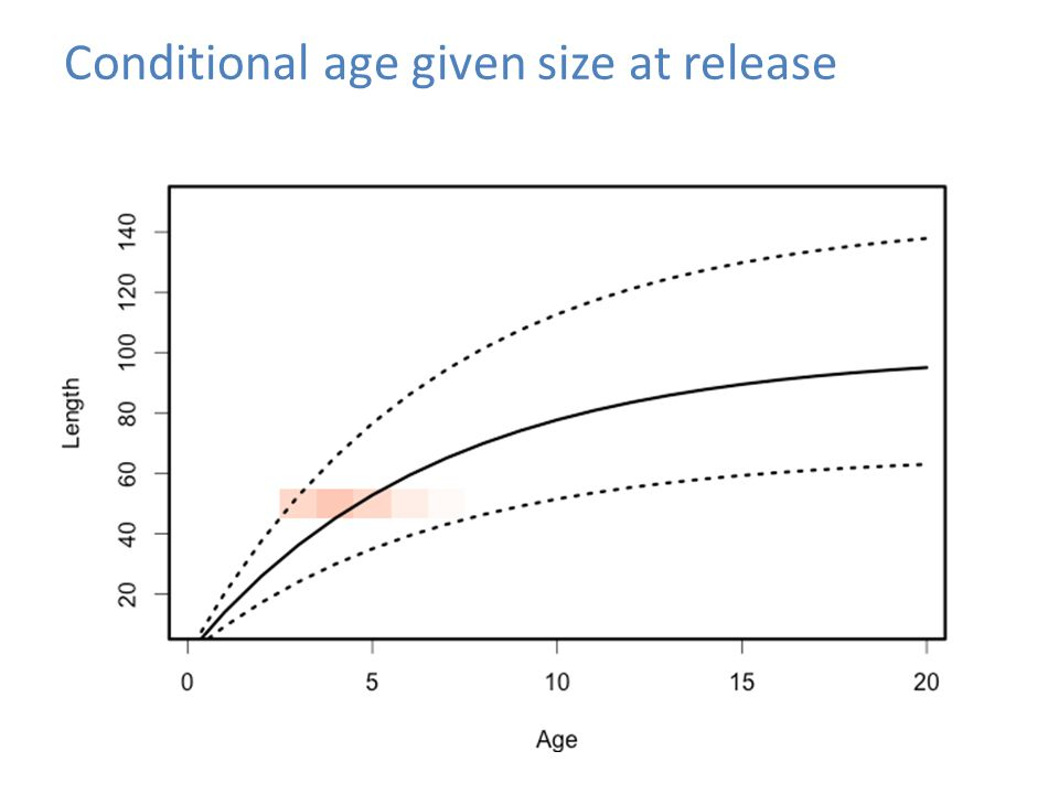 Conditional age given size at release