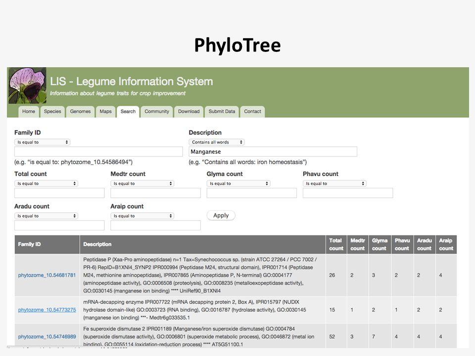 PhyloTree