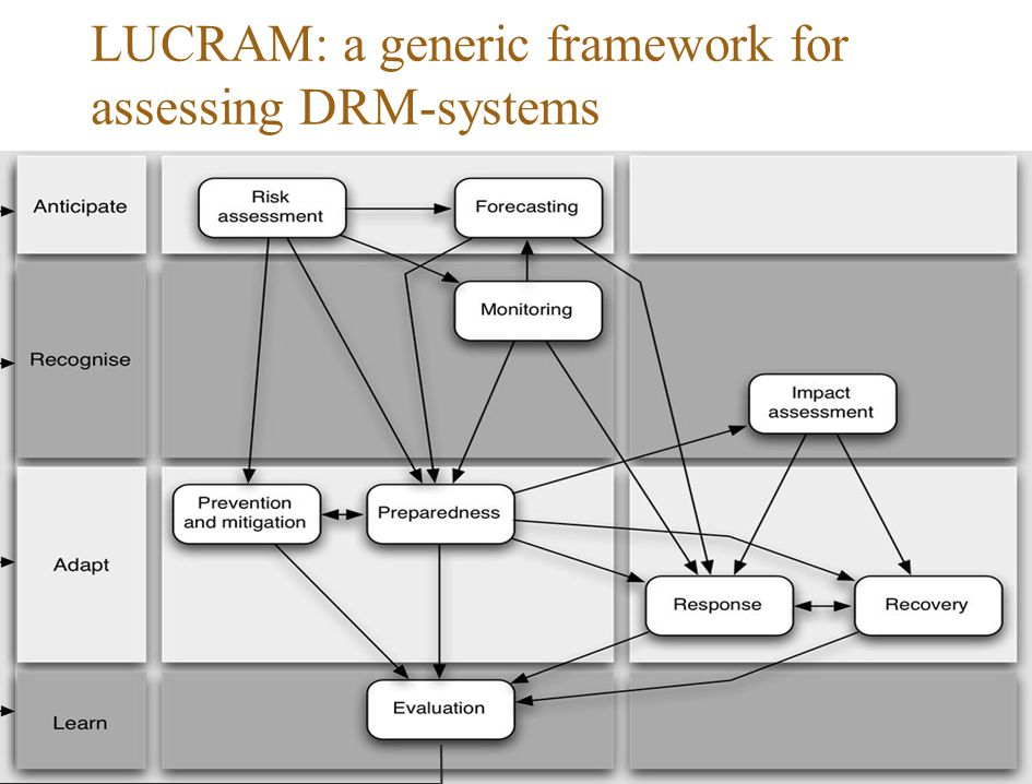LUCRAM: a generic framework for assessing DRM-systems