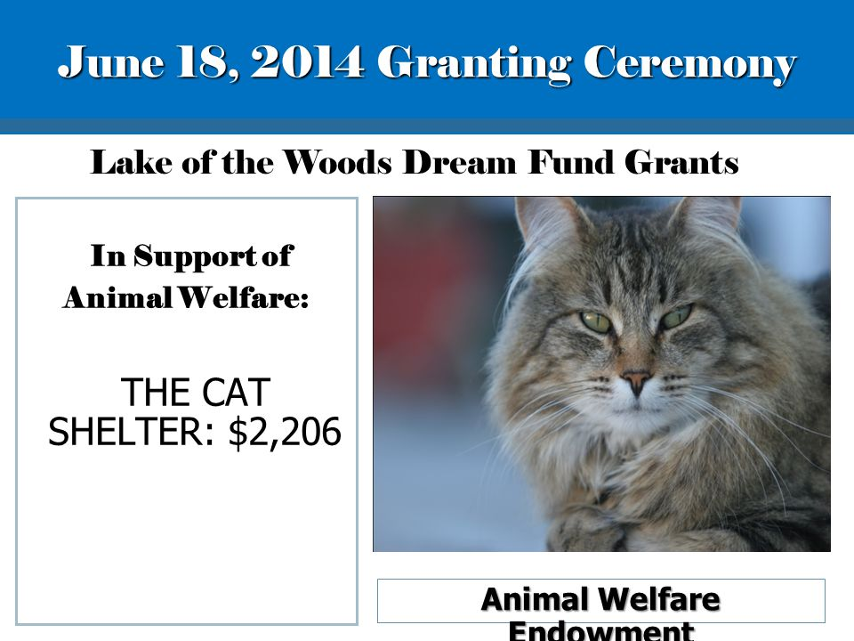 In Support of Animal Welfare: THE CAT SHELTER: $2,206 Animal Welfare Endowment Lake of the Woods Dream Fund Grants June 18, 2014 Granting Ceremony