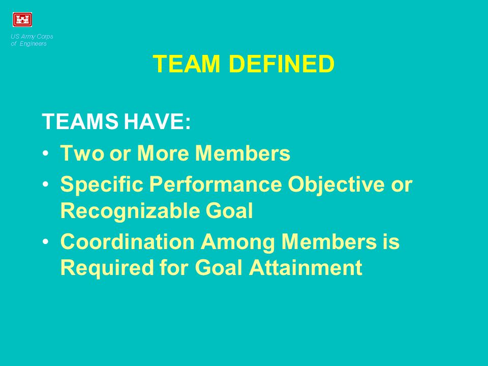TEAM DEFINED TEAMS HAVE: Two or More Members Specific Performance Objective or Recognizable Goal Coordination Among Members is Required for Goal Attai