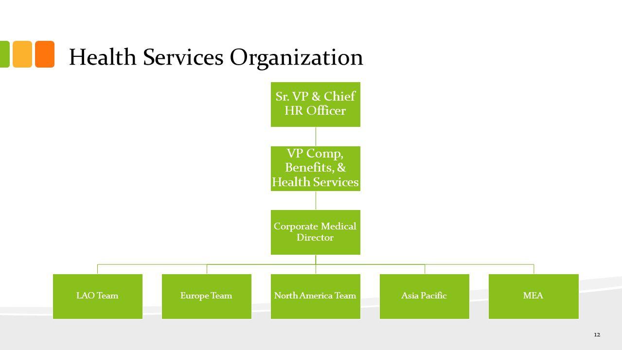 Health Services Organization 12