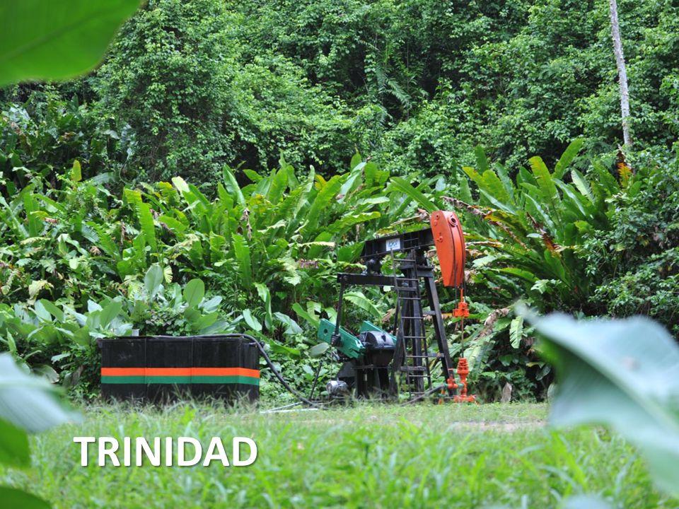 6 TRINIDAD