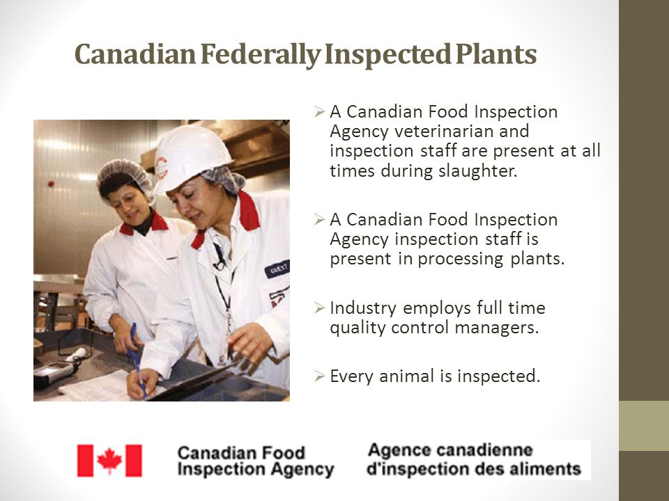 Canadian Federally Inspected Plants  A Canadian Food Inspection Agency veterinarian and inspection staff are present at all times during slaughter.