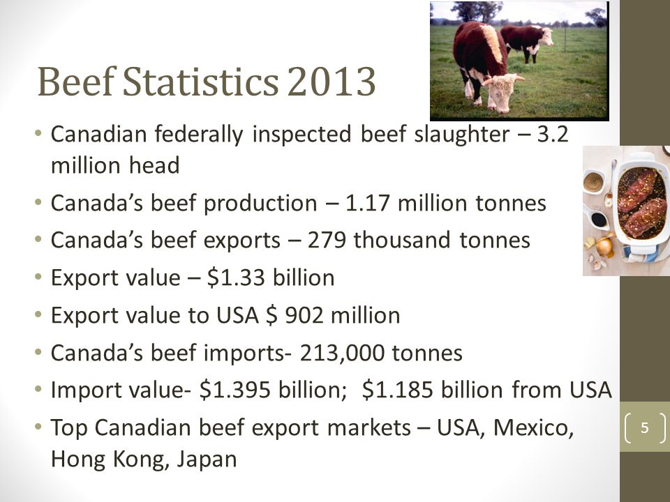 Beef Statistics 2013 Canadian federally inspected beef slaughter – 3.2 million head Canada's beef production – 1.17 million tonnes Canada's beef expor