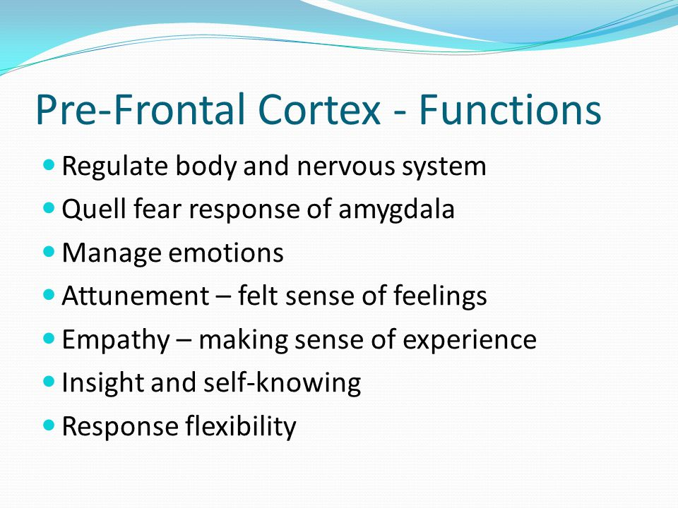 Pre-Frontal Cortex - Functions Regulate body and nervous system Quell fear response of amygdala Manage emotions Attunement – felt sense of feelings Em