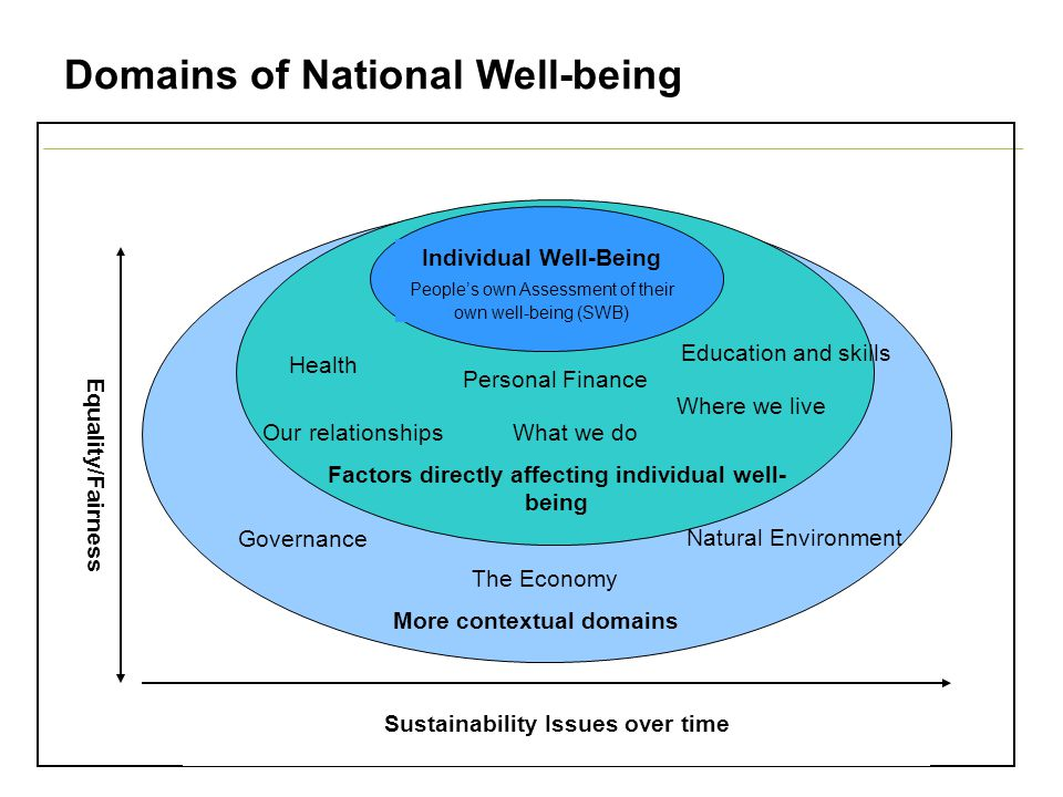 Domains of National Well-being Sustainability Issues over time Equality/Fairness More contextual domains The Economy Governance Education and skills Natural Environment Factors directly affecting individual well- being Personal Finance Our relationshipsWhat we do Where we live Health Individual Well-Being People's own Assessment of their own well-being (SWB)