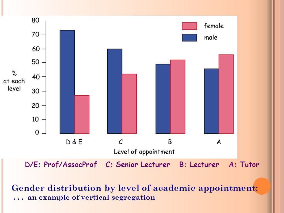 D/E: Prof/AssocProf C: Senior Lecturer B: Lecturer A: Tutor Gender distribution by level of academic appointment:...