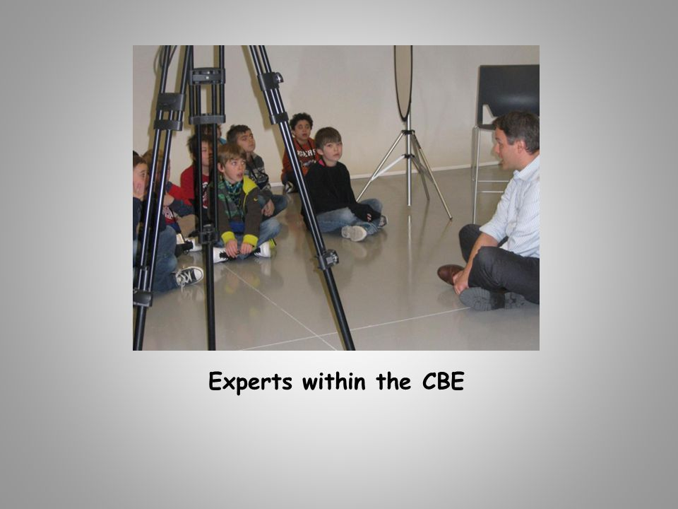 Experts within the CBE