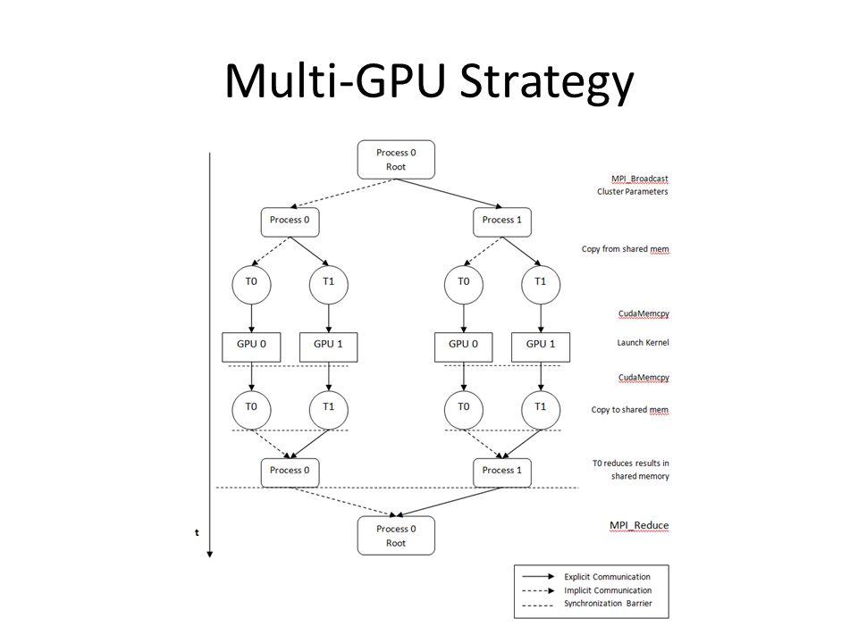 Multi-GPU Strategy
