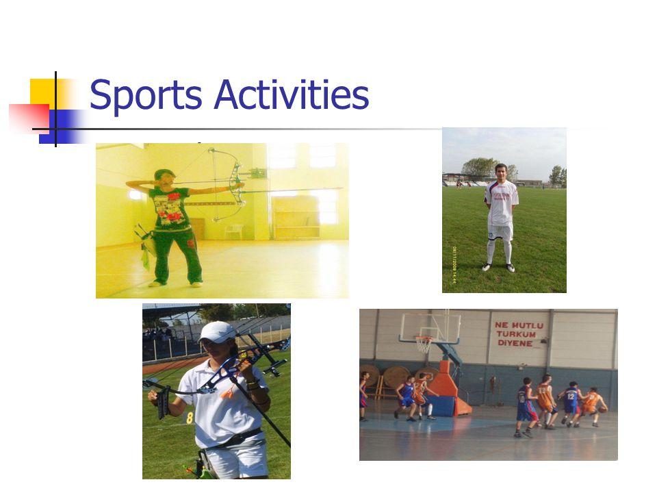 Sports Activities Archery